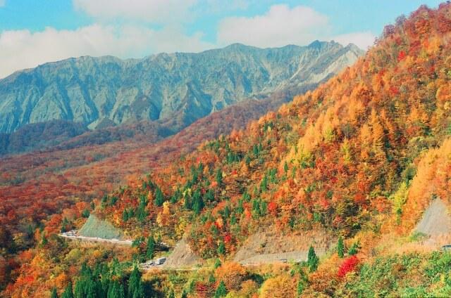 北海道紅葉旅